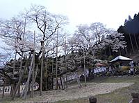 Dscn0269_12